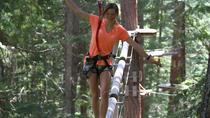 Aerial Treetop Adventure Course, Whistler, Ziplines