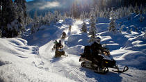 Snowmobile British Columbia Tour for Intermediate Riders, Whistler, Ski & Snow
