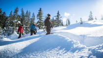Whistler Snowshoeing Adventure with Optional Peak 2 Peak Ticket, Whistler, Helicopter Tours