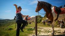 Cretan Horse riding in Finikia and Giouchtas Mountains, Heraklion