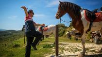 Crete Finikia and Giouchtas Mountains Horse Riding Tour with Lunch, Iraklio
