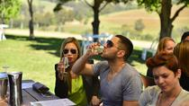 Hunter Valley Wine Full Day Tour from Newcastle with Cheese, Chocolate and Lunch, Newcastle, ...