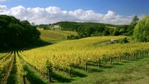 McLaren Vale and Glenelg Tour with Wine Tastings from Adelaide, Adelaide, City Tours