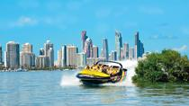 Gold Coast Combo: Jet Boat Ride and Sea World Theme Park Admission, Gold Coast, Jet Boats & Speed ...