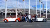 The UNAM Campus VW Beetle Convertible or Classic Combi Private Tour, Mexico