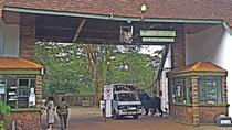 Nairobi National Park Safari Tour, Nairobi, Attraction Tickets
