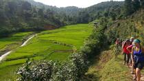 Full Day Mountain Area Trekking in Hsipaw, Myanmar, Hiking & Camping