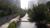 Guided Morning Tour in Seoul including the National Museum, Cheonggyecheon Stream and an Amethyst ...