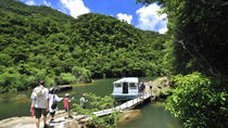 Iriomote Island Tour: Urauchi River Cruise, Maryudo Falls Hike and Kayak Tour, Ishigaki, null