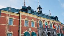 Tour to Swedish and Finnish border cities with shopping, Rovaniemi