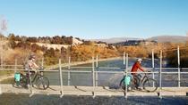 Cruiser Electric Bike - Full day hire, Wanaka, Bike & Mountain Bike Tours
