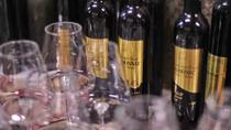 Bizeljsko wine tasting tour, Slovenia - sparkling, premium and chocolate wine, Ljubljana, Chocolate ...