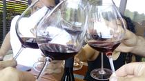 Wine tasting tour to 3 excellent wineries of different sizes, Slovenian Styria, Ljubljana, Wine...