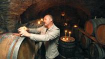 Wine tasting tour - Vipava wine region, Slovenia, Ljubljana, Wine Tasting & Winery Tours