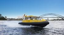 Private Sydney Harbour Cruise by Vintage Water Taxi, Sydney, Day Cruises