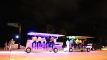 PediBus Pub Crawl in Fort Lauderdale, Fort Lauderdale, Bar, Club & Pub Tours