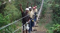 Montego Bay Ultimate Zipline Adventure