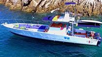 PATO BOBO BOAT, Puerto Vallarta, Day Cruises