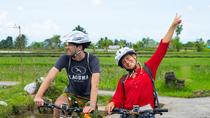 Amazing Electric Bike Tours Ubud, Ubud, Bike & Mountain Bike Tours