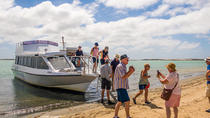 Coorong Discovery Cruise Including Transfers from Adelaide, Adelaide, Day Cruises