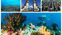 Double Dive at Blue Lagoon Combination Heaven Gate and Tirta Gangga, Kuta, Cultural Tours