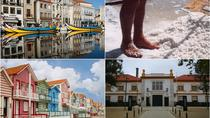 Aveiro Tour Small group, Moliceiro Cruise, Costa Nova, Vista Alegre & Lunch, Porto, Cultural Tours