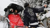 Otaru Rickshaw Tour, Hokkaido, Custom Private Tours