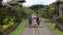 BALI PRIVATE TOUR TRADITIONAL VILLAGE AND WATERFALL THEN BEAUTIFUL VIRGIN BEACH, Ubud, Private Day ...