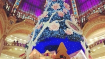 Tour à pied dans Paris : Plats et décorations de Noël, Paris, Walking Tours