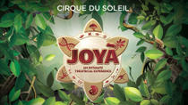 JOYÀ by Cirque du Soleil® at Vidanta Riviera Maya, Cancun, Day Trips