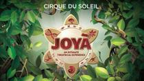JOYÀ by Cirque du Soleil® from Playa del Carmen, Playa del Carmen