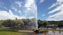 Old Faithful Geyser Admission, Napa & Sonoma, Attraction Tickets