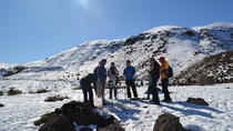 Private Andes and Wines from Santiago, Santiago, Private Day Trips