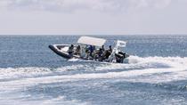 Adventure Snorkel Tour, Aruba, Snorkeling