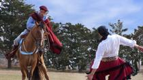 San Antonio de Areco and Gaucho Day Trip from Buenos Aires, Buenos Aires, Day Trips