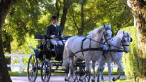 Private Tour from Trieste: Lipica Stud Farm (Lipizzaner Stud Farm), Trieste, Private Sightseeing ...
