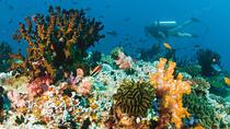 2 X Dive at Blue Lagoon Combination Heaven Gate and Tirta Gangga, Kuta, 4WD, ATV & Off-Road Tours