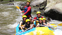 Ayung Rafting - Uma Pakel Swing - Tegalalang Rice Terrace - Monkey Forest, Kuta, Cultural Tours