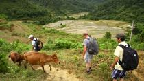 Private 3-Day Trekking Tour: Pu Luong Nature Reserve Including Homestay from Hanoi, Hanoi