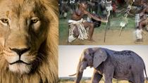 8 hour Cultural Village and Lion Park tour, Johannesburg, Day Trips