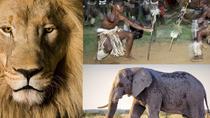 8 hour Cultural Village and Lion Park tour, Johannesburg, Nature & Wildlife