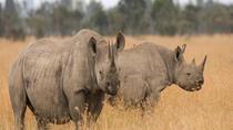 9 days Classic Safari, Nairobi, Cultural Tours