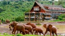 BEAUTY OF KENYA ( ABERDARE, LAKE NAKURU AND MASAI MARA), Nairobi, Cultural Tours