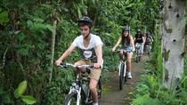 Bali Countryside Cycling Tours, Ubud, 4WD, ATV & Off-Road Tours