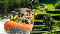 Bali Rafting and Private Combination Ubud Tour, Ubud, 4WD, ATV & Off-Road Tours