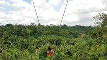 Bali Swing Sacred Monkey Forest and Volcano Day Tours, Bali, Private Day Trips