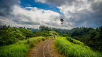 Full-day Campuhan Ridge Walk Combination Tirta Empul & Temple, Ubud, Day Trips
