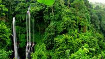 Sekumpul Waterfall Trekking, Ubud, Day Trips