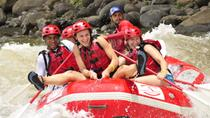 Rio Balsa Whitewater Rafting Tour from La Fortuna, La Fortuna, null