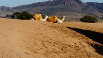 Full-Day Safari Small Desert With Lunch, Agadir, Day Trips